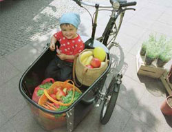 Triciclo Nihola